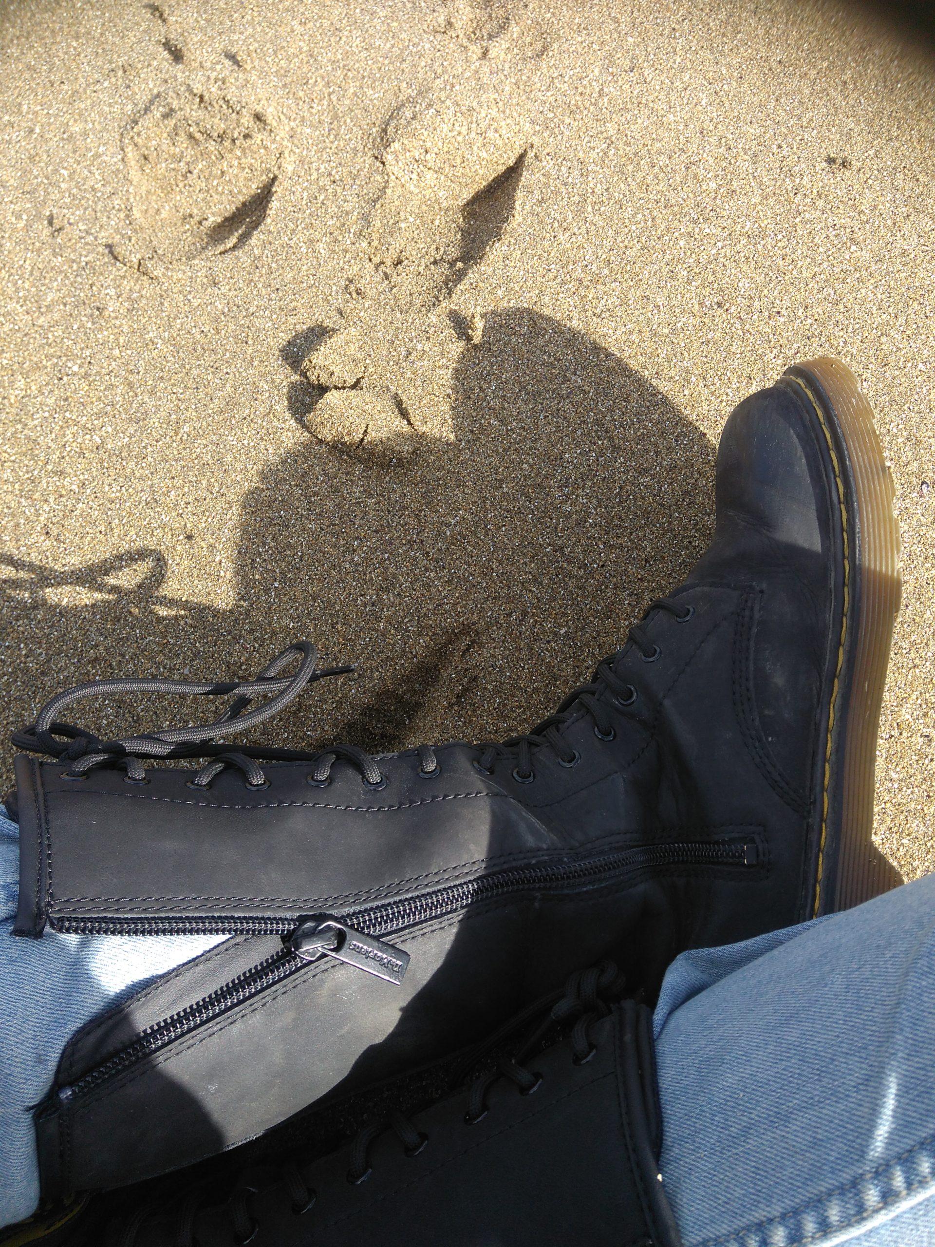 plage saint quay portrieux